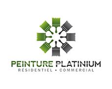 Peinture Platinium logo