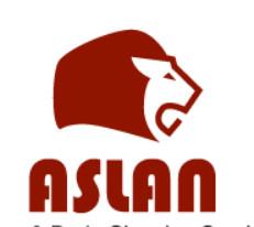 ASLAN Plumbing & Drain Cleaning Service Ltd. logo